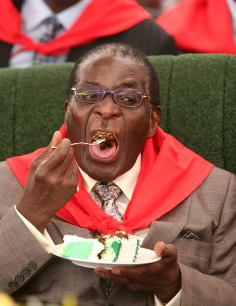 Zimbabwe Mugabe 85th birthday party