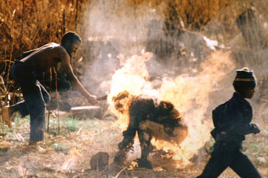 """Apartheid"" in het nieuwe Zuid Afrika: ANC-er vlammenwerpt een Inkatha-Zoeloe (Soweto 1991)"