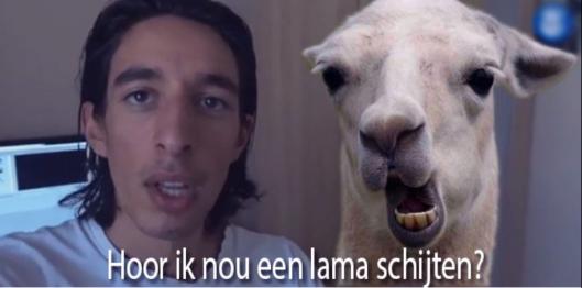 De pelenburgse haatvlogger worden wel eens vogelverschrikkerkwaliteiten toegeschreven, maar GeenStijl ziet een lama in 'm.